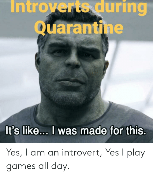 an introvert: Yes, I am an introvert, Yes I play games all day.