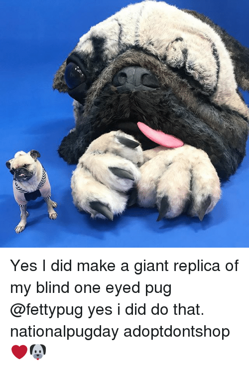 Memes, Giant, and 🤖: Yes I did make a giant replica of my blind one eyed pug @fettypug yes i did do that. nationalpugday adoptdontshop ❤️🐶