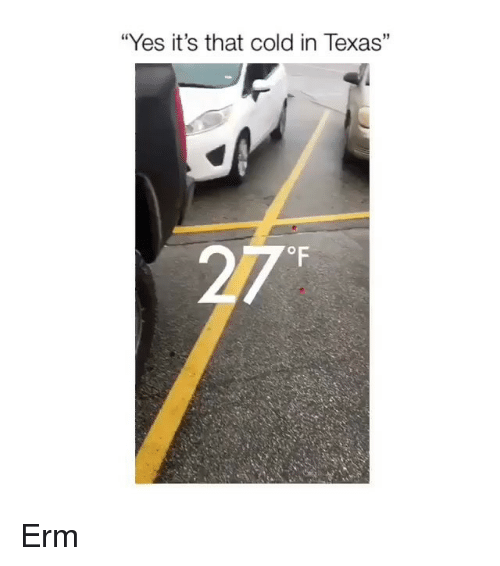 """Memes, Texas, and Cold: """"Yes it's that cold in Texas"""" Erm"""