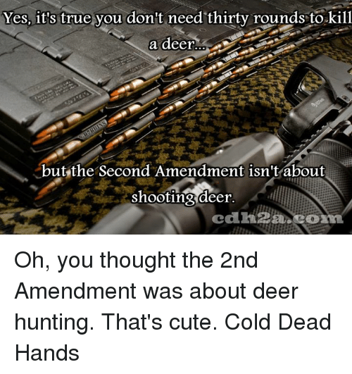Deer Hunting: Yes, it's true you don't need thirty rounds tokill  a deer  but the Second Amendment isn't about  shooting deer Oh, you thought the 2nd Amendment was about deer hunting. That's cute. Cold Dead Hands
