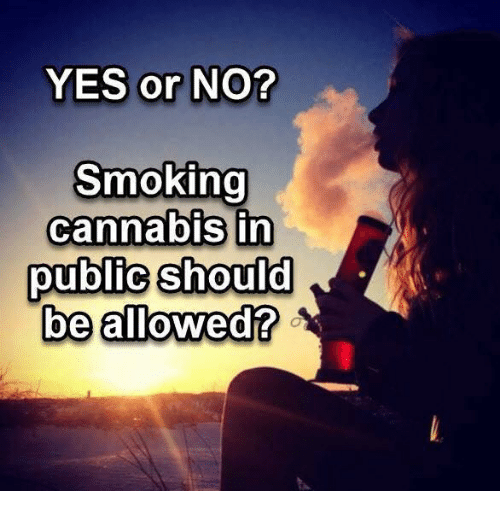 Memes, Smoking, and Cannabis: YES or NO?  Smoking  cannabis in  public should  be allowed?