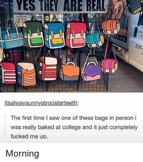 Memes, 🤖, and Yes: YES THEY ARE REAL  S19.  itsalwaysunnyatroosterteeth:  The first time l saw one of these bags in person i  was really baked at college and it just completely  fucked me up. Morning
