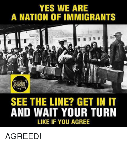 Memes, 🤖, and Yes: YES WE ARE  A NATION OF IMMIGRANTS  RE  SEE THE LINE? GET IN IT  AND WAIT YOUR TURN  LIKE IF YOU AGREE AGREED!