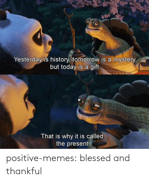 Mystery: Yesterday is history, tomorrow is a mystery,  but today is a gift.  That is why it is called  the present. positive-memes:  blessed and thankful