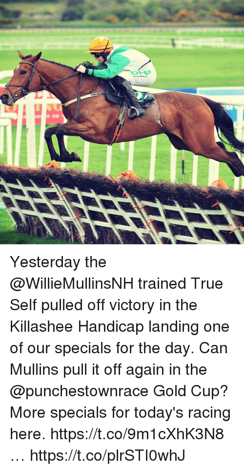 Memes, True, and Gold Cup: Yesterday the @WillieMullinsNH trained True Self pulled off victory in the Killashee Handicap landing one of our specials for the day. Can Mullins pull it off again in the @punchestownrace Gold Cup? More specials for today's racing here. https://t.co/9m1cXhK3N8 … https://t.co/plrSTI0whJ