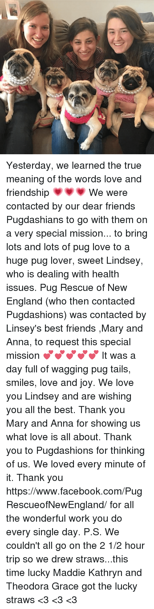 Anna, England, and Facebook: Yesterday, we learned the true meaning of the words love and friendship 💗💗💗 We were contacted by our dear friends Pugdashians to go with them on a very special mission... to bring lots and lots of pug love to a huge pug lover, sweet Lindsey, who is dealing with health issues.  Pug Rescue of New England (who then contacted Pugdashions) was contacted by Linsey's best friends ,Mary and Anna, to request this special mission 💕💕💕💕💕 It was a day full of wagging pug tails, smiles, love and joy. We love you Lindsey and are wishing you all the best. Thank you Mary and Anna for showing us what love is all about. Thank you to Pugdashions for thinking of us. We loved every minute of it. Thank you https://www.facebook.com/PugRescueofNewEngland/  for all the wonderful work you do every single day.  P.S. We couldn't all go on the 2 1/2 hour trip so we drew straws...this time lucky Maddie Kathryn and Theodora Grace got the lucky straws <3 <3 <3