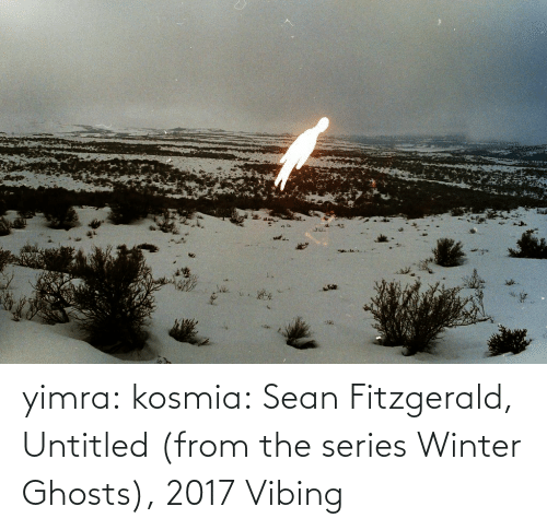 Winter: yimra: kosmia:  Sean Fitzgerald, Untitled (from the series Winter Ghosts), 2017   Vibing