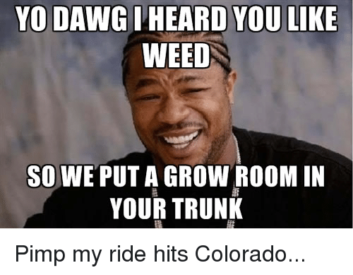 pimp my ride: YO DAWG  ARD YOU LIKE  WEED  SO WE PUT A GROW ROOM IN  YOUR TRUNK Pimp my ride hits Colorado...