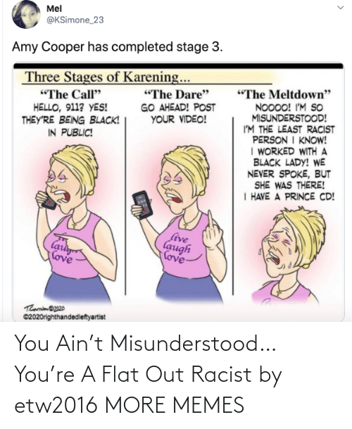 Flat: You Ain't Misunderstood…You're A Flat Out Racist by etw2016 MORE MEMES