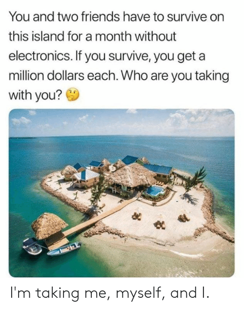 million dollars: You and two friends have to survive on  this island for a month without  electronics. If you survive, you get  million dollars each. Who are you taking  with you? I'm taking me, myself, and I.