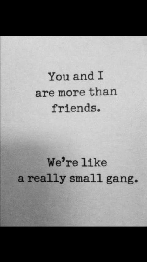 Andi: You andI  are more than  friends.  We're like  a really small gang.