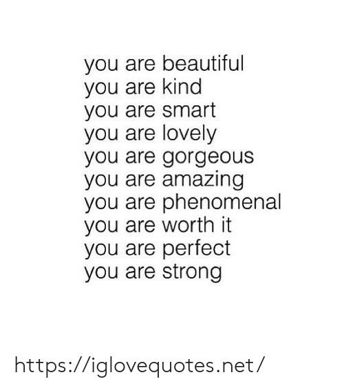 you are beautiful: you are beautiful  you are kind  you are smart  you are lovely  you are gorgeous  you are amazing  you are phenomenal  you are worth it  you are perfect  you are strong https://iglovequotes.net/
