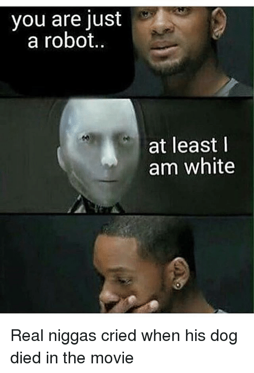 Memes, Movie, and White: you are just  a robot.  at least  am white Real niggas cried when his dog died in the movie