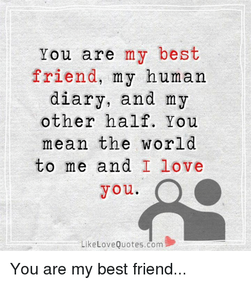 25+ Best Memes About Love Quote