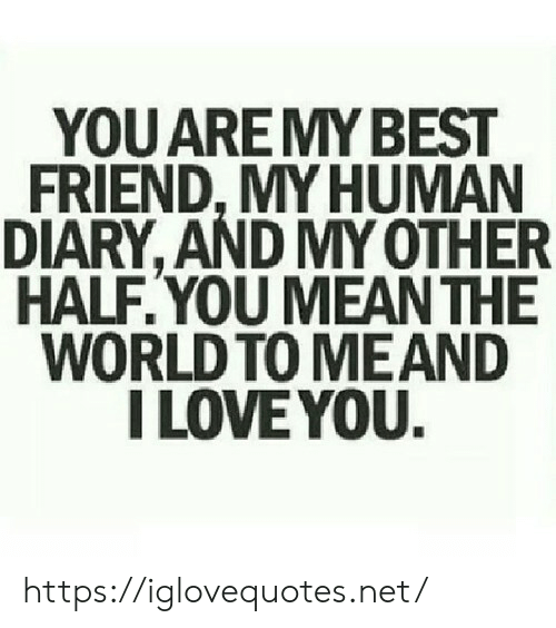 my best friend: YOU ARE MY BEST  FRIEND,MY HUMAN  DIARY, AND MY OTHER  HALF.YOU MEAN THE  WORLD TO MEAND  I LOVE YOU. https://iglovequotes.net/