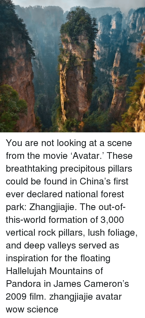 out of this world: You are not looking at a scene from the movie 'Avatar.' These breathtaking precipitous pillars could be found in China's first ever declared national forest park: Zhangjiajie. The out-of-this-world formation of 3,000 vertical rock pillars, lush foliage, and deep valleys served as inspiration for the floating Hallelujah Mountains of Pandora in James Cameron's 2009 film. zhangjiajie avatar wow science