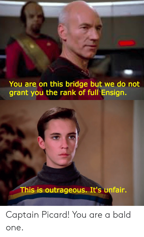 captain picard: You are on this bridge but we do not  grant you the rank of full Ensign.  This is outrageous. It's unfair. Captain Picard! You are a bald one.
