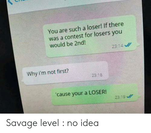Savage Level: You are such a loser! If there  was a contest for losers you  would be 2nd  23:14 ν//  Why i'm not first?  23 8  cause your a LOSER!  23.19 Savage level : no idea