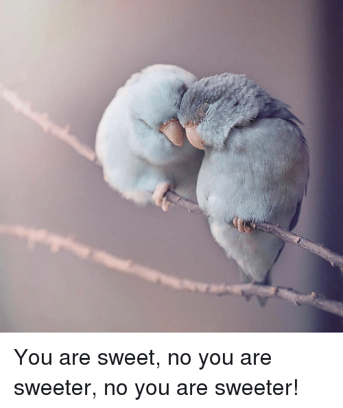 No You Are: You are sweet, no you are sweeter, no you are sweeter!