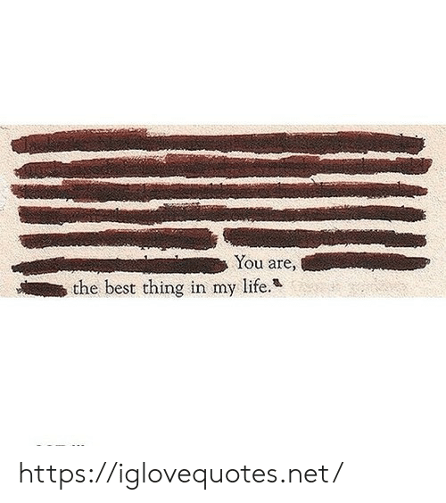 you are the best: You are,  the best thing in my life. https://iglovequotes.net/