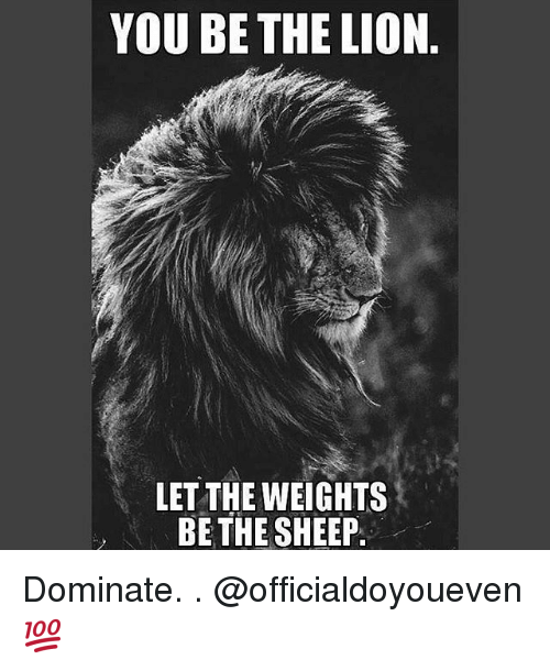 Lions: YOU BE THE LION  LET THE WEIGHTS  BE THE SHEEP Dominate. . @officialdoyoueven 💯