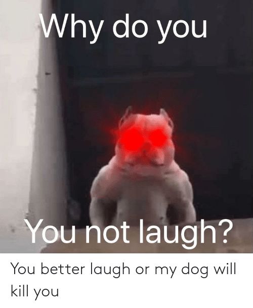 Kill You: You better laugh or my dog will kill you