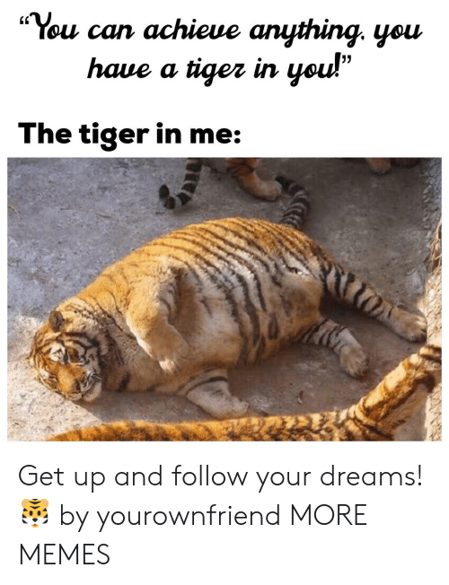 """Follow Your Dreams: """"You can achieue anything. yeu  (C  haue a tiger irn  The tiger in me Get up and follow your dreams! 🐯 by yourownfriend MORE MEMES"""