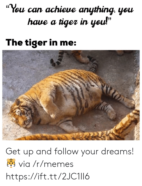 """Follow Your Dreams: """"You can achieue anything. yeu  (C  haue a tiger irn  The tiger in me Get up and follow your dreams! 🐯 via /r/memes https://ift.tt/2JC1II6"""