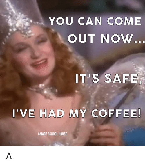 Memes, 🤖, and Smart: YOU CAN COME  OUT NOW  IT'S SAFE  I'VE HAD MY COFFEE!  SMART SCHOOL HOUSE A