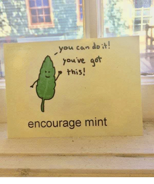 Youve Got This: you can do t  youve got  this  encourage mint