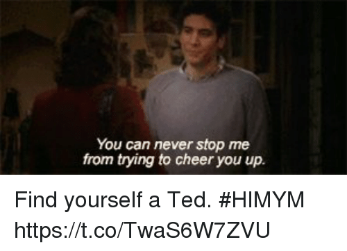 Memes, Ted, and Never: You can never stop me  from trying to cheer you up. Find yourself a Ted. #HIMYM https://t.co/TwaS6W7ZVU