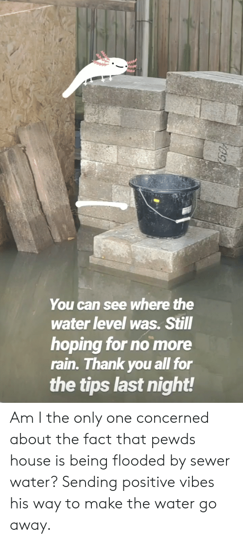 sending positive vibes: You can see where the  water level was. Still  hoping for no more  rain. Thank you all for  the tips last night! Am I the only one concerned about the fact that pewds house is being flooded by sewer water? Sending positive vibes his way to make the water go away.