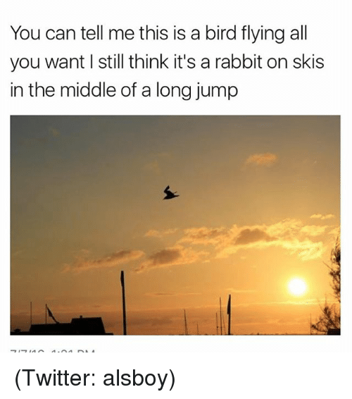 Funny, Meme, and Rabbit: You can tell me this is a bird flying all  you want l still think it's a rabbit on skis  in the middle of a long jump (Twitter: alsboy)