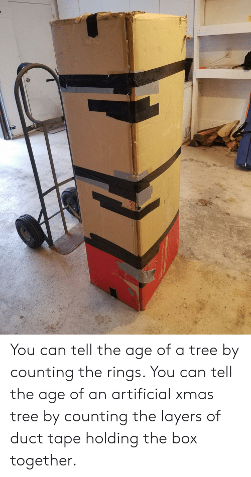 duct tape: You can tell the age of a tree by counting the rings. You can tell the age of an artificial xmas tree by counting the layers of duct tape holding the box together.