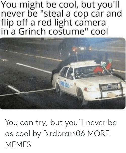 Try: You can try, but you'll never be as cool by Birdbrain06 MORE MEMES