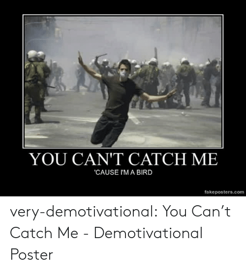 demotivational: YOU CAN'T CATCH ME  CAUSE I'M A BIRD  fakeposters.com very-demotivational:  You Can't Catch Me - Demotivational Poster