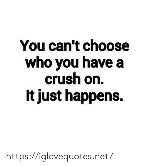 A Crush: You can't choose  who you have a  crush on.  It just happens. https://iglovequotes.net/