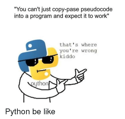 "thats-where-youre-wrong-kiddo: ""You can't just copy-pase pseudocode  into a program and expect it to work""  that's where  you're wrong  kiddo  ython Python be like"