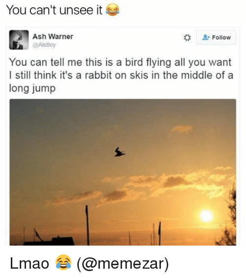 Ash, Lmao, and Memes: You can't unsee it  Ash Warner  Follow  @AlsBoy  You can tell me this is a bird flying all you want  I still think it's a rabbit on skis in the middle of a  long jump Lmao 😂 (@memezar)