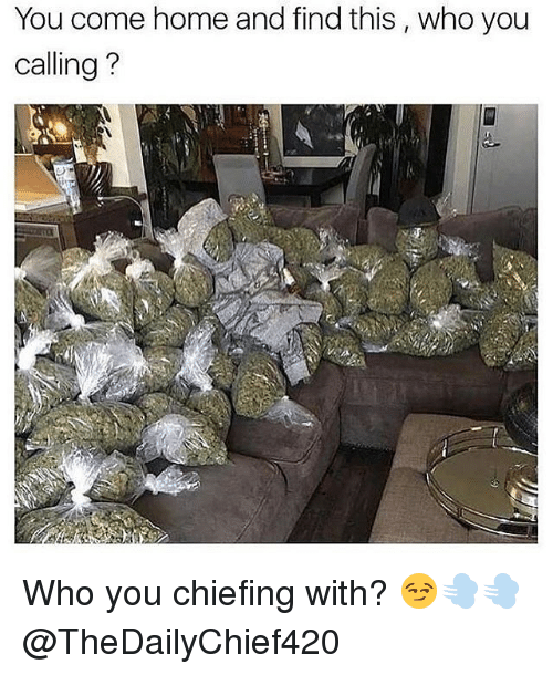 Memes, Home, and 🤖: You come home and find this , who you  calling?  :9 Who you chiefing with? 😏💨💨 @TheDailyChief420