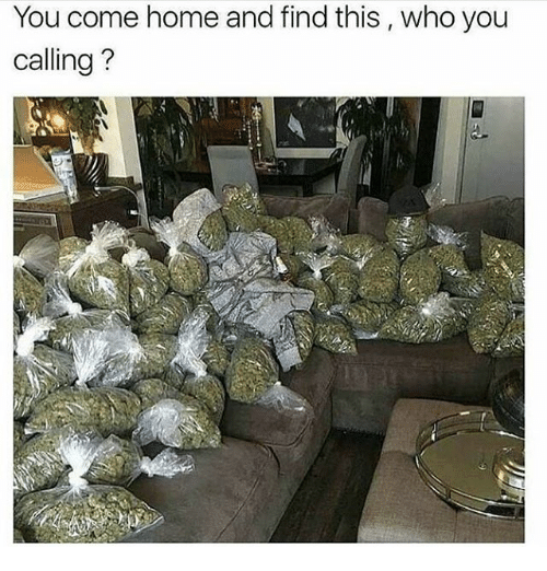 Who You Calling: You come home and find this, who you  calling?