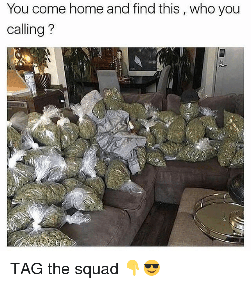 Who You Calling: You come home and find this, who you  calling TAG the squad 👇😎