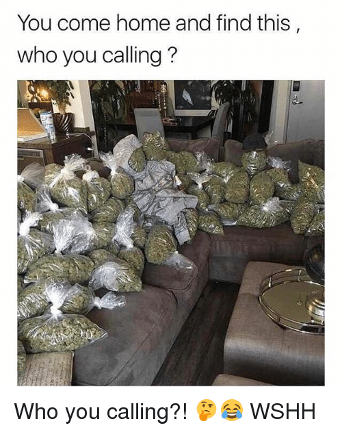 Who You Calling: You come home and find this  who you calling? Who you calling?! 🤔😂 WSHH