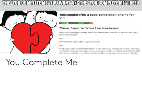 Programmer Humor: You Complete Me