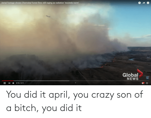 You Crazy: You did it april, you crazy son of a bitch, you did it
