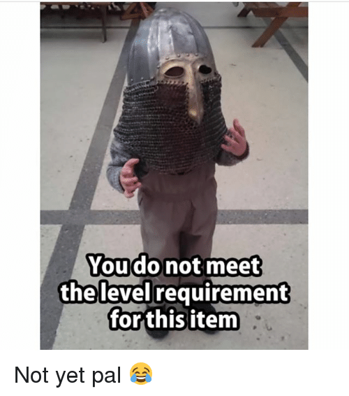 the levellers: You do not meet  the level requirement  for this item Not yet pal 😂