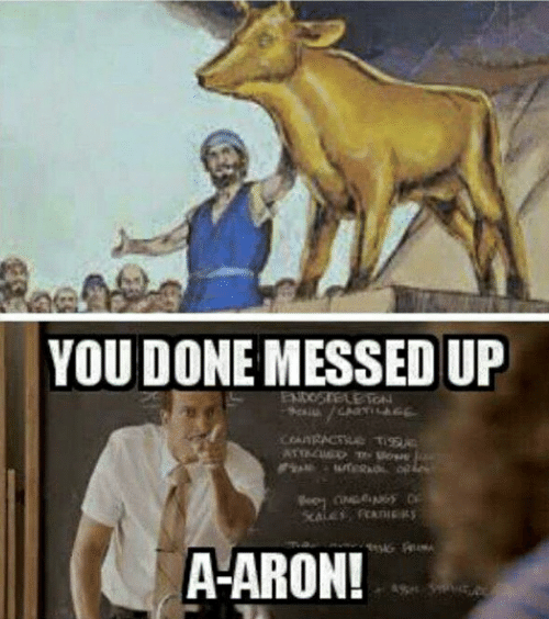 You Done Messed Up: YOU DONE MESSED UP  ENDOSTELE TON  ARRACT Ti  ATTAC  A-ARON!