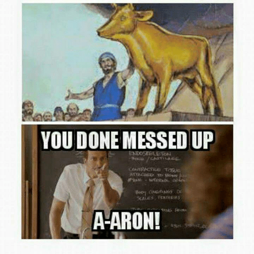 You Done Messed Up: YOU DONE MESSED UP  ENDOSTELE TON  SATTAC T  CM GS  A-ARON!