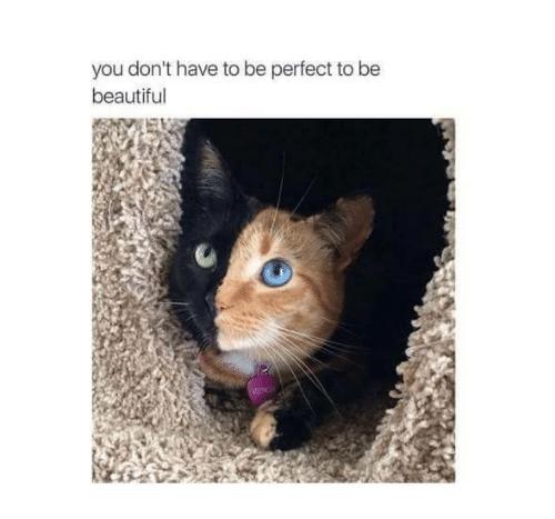 Beautiful, Memes, and 🤖: you don't have to be perfect to be  beautiful