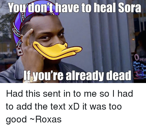 You Don't Have to Heal Sora You're Already Dead Had This ...